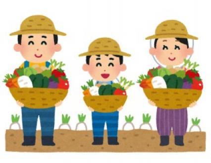 おたより文例〜夏野菜の栽培〜