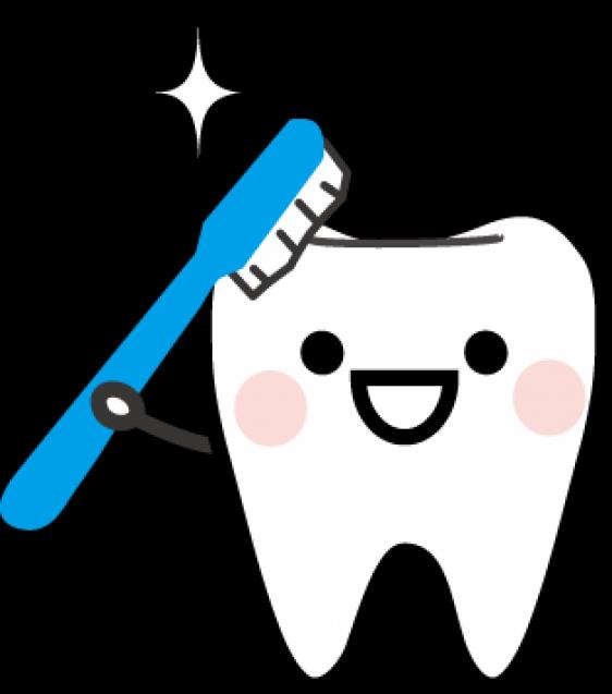 歯の衛生週間とは?
