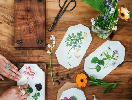 保育園で作ろう簡単な押し花の作り方をご紹介