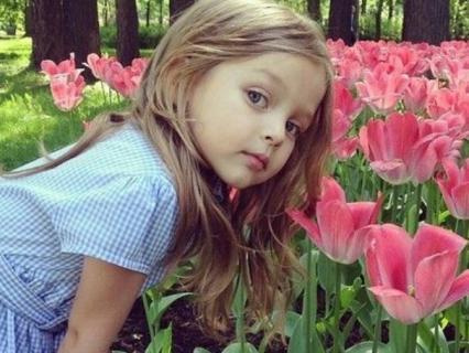 【自然】チューリップの育て方のコツとチューリップの種類