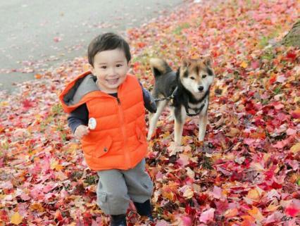 【幼児クラス】秋の手遊び⭐アイディア集①