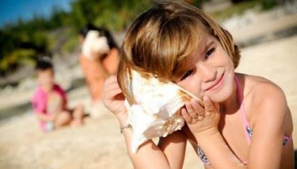 【夏の製作】海遊びのあとは、貝殻で想い出 製作!