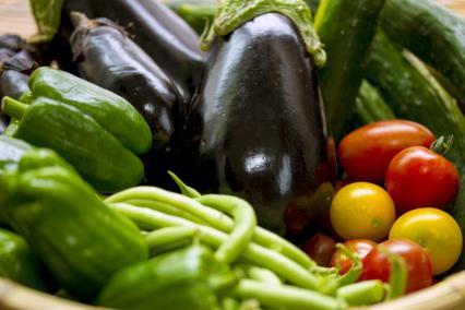 夏野菜の保存とお助けレシピ