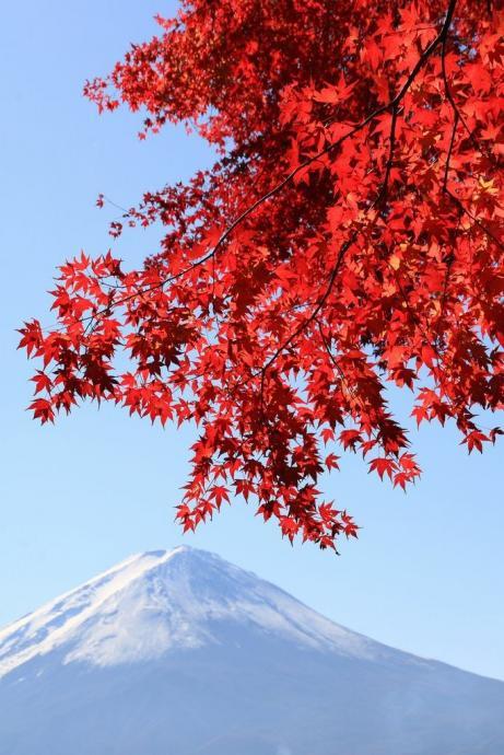 季節の童謡 10月