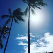 m.aloha